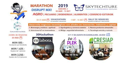 SkyTech 30Hackathon : AGRO Pecuario Bioenergia Alimentos Comercio