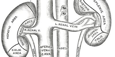 Nephrology / Urology TEAM Day