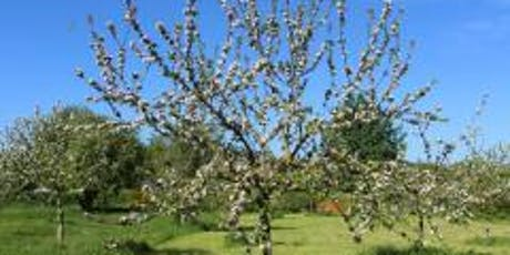 A Year in the life of Bridport Community Orchard tickets