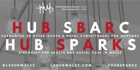 HUB SPARKS: Physical Activity and Exercise Relating to Healthy Ageing tickets