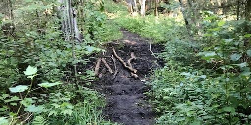 AuSable Trail Maintenance