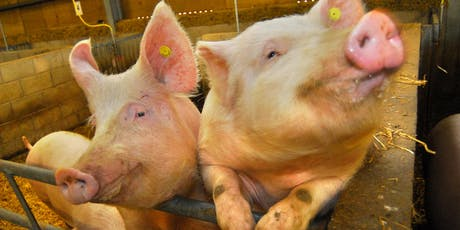 Professor Bruce Whitelaw: CRISPRing Livestock tickets