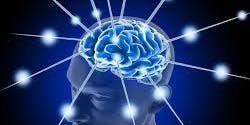 The Neuroscience of Motivation and Engagement - Coaches, Consultants and Leaders of Organisations