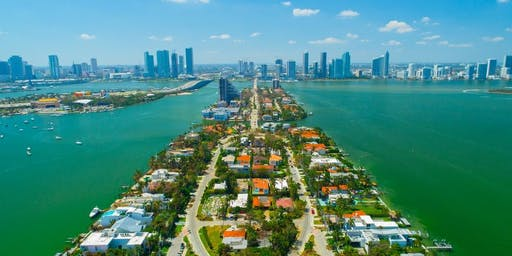 Miami Beach Democratic Club Park Clean Up
