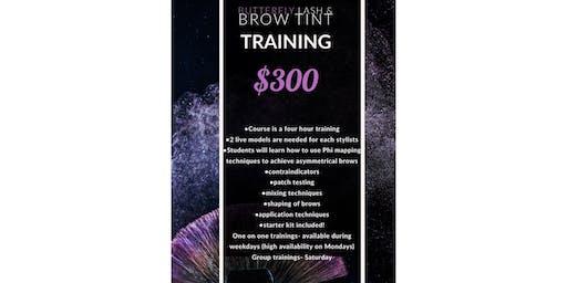Eyelash and Eyebrow tint training