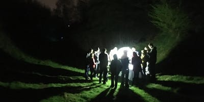 Moth Trapping Night at Warley Woods