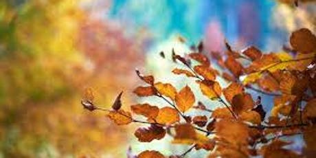 Autumn Retreat - Gratitude of Abundance  tickets