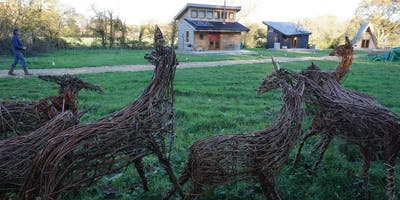 Willow Weaving Workshop with Wyldwood Willow - Sta