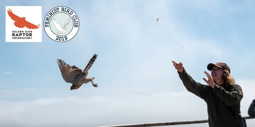 Hawk Migration and Raptor Research Demo