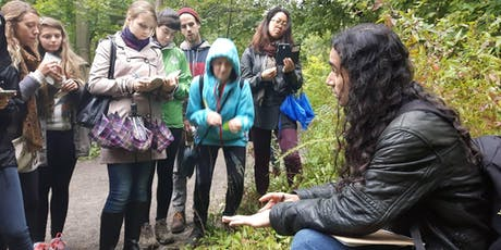Wild Medicinal Plant Walk- Evening Edition @ Trinity Bellwoods Park tickets