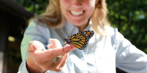 Butterfly Blitz Wrap-up Celebration!