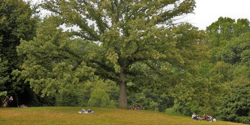 NYC Wild! Essentials: Brooklyn: Prospect Park Photography Ramble and Nature Walk
