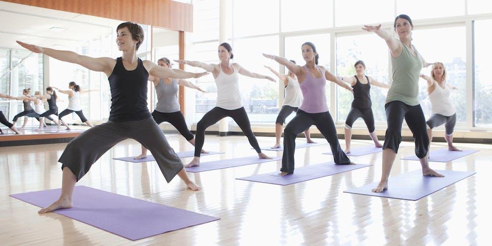 Yoga có thể giúp bạn giảm chứng đau thắt lưng