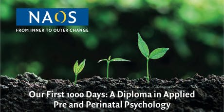 Introductory Talk: 'Our First 1000 Days: A Diploma..'. tickets