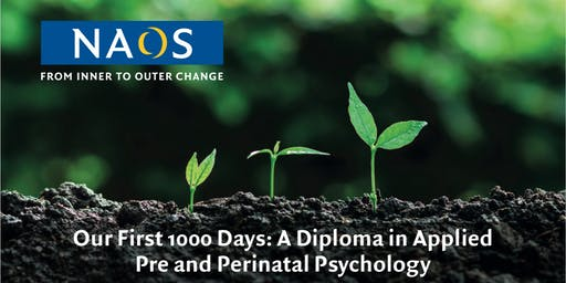 Introductory Talk: 'Our First 1000 Days: A Diploma..'.