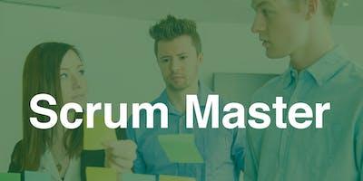 Scrum Master Professional Certificate