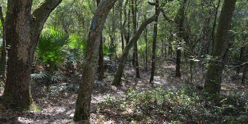 Florida Group Hike | Ross Prairie State Park