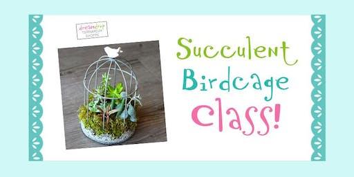 Succulent Birdcage Class!