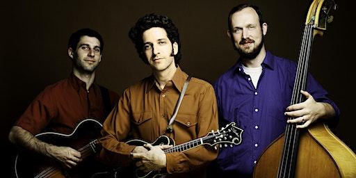 Andrew Collins Trio