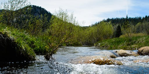 California's Water Resilience Portfolio