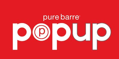 Pure Barre Grand Blanc Flint Institute of Arts Pop Up Class