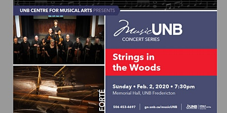 Strings in the Woods tickets