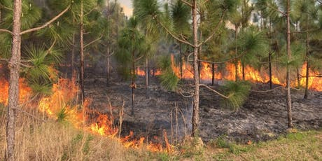 Prescribed Burner Certification – Forestland Workshop tickets