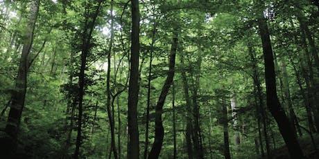 BioBlitz Guided Tree Walk tickets