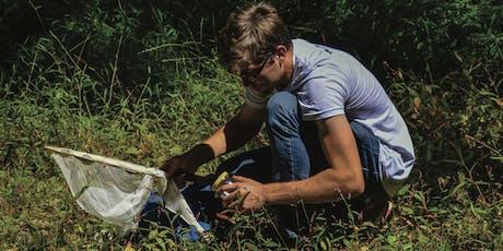 BioBlitz Guided Invertebrate Walk tickets