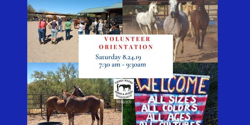 Tierra Madre Horse & Human Sanctuary Volunteer Orientation