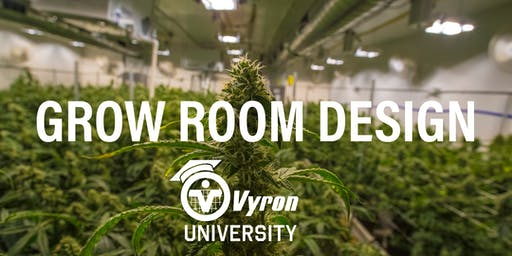 Vyron University | Grow Room Design | Late Afternoon