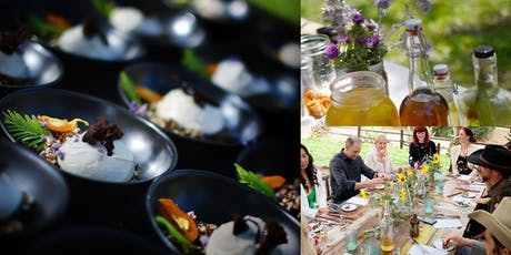 The Forest Table: Sunset Plant Walk + Wild Food Tasting tickets