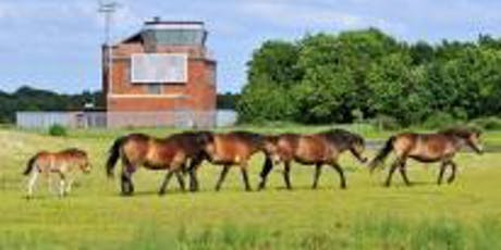 Greenham Common: Looking after the Wildlife  tickets