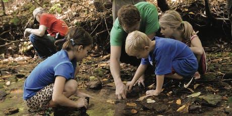 BioBlitz Leaf Pack & Stream Science tickets
