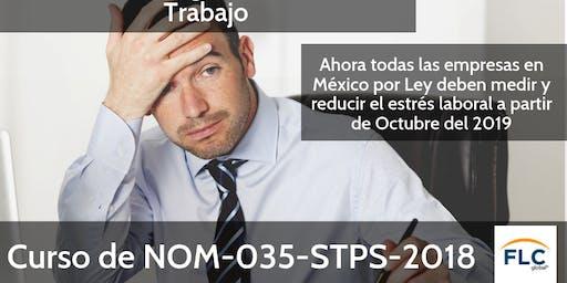 Curso NOM-035-STPS-2018: Factores de riesgo psicosocial en el trabajo-Identificación, análisis y prevención.