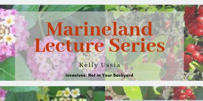 Marineland Monthly Lecture (November)