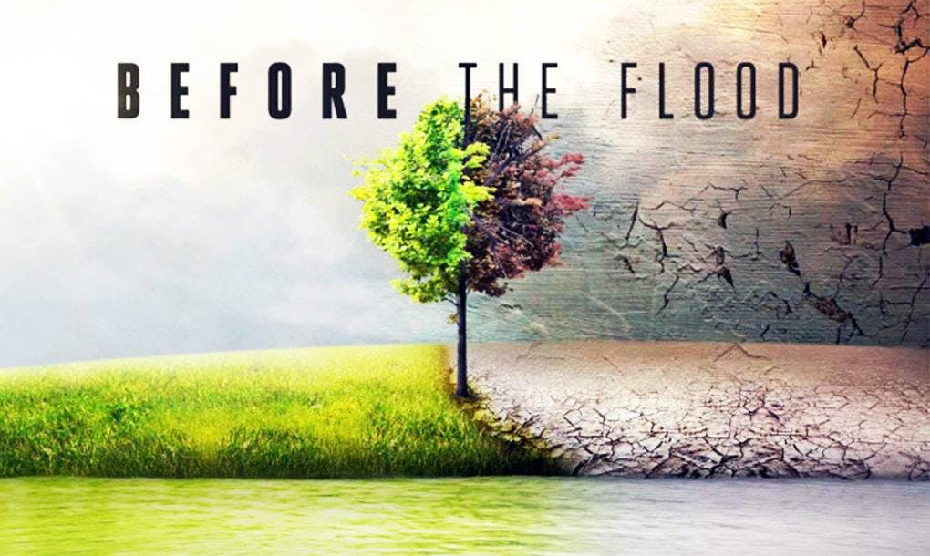 Social & Environmental Justice Part 8: Before the Flood + Group Discussion