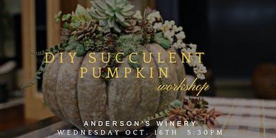 DIY Succulent Pumpkin Workshop at Anderson's Winery