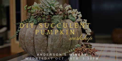 DIY Succulent Pumpkin Workshop at Anderson's Winery