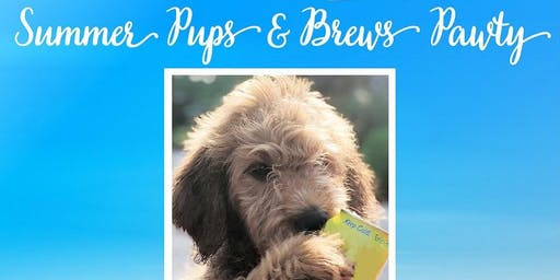 BarkHappy Sacramento:Summer Pups & Brews Pawty Benefiting Recycled Pets NorCal!