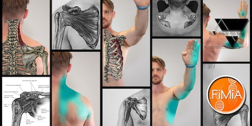 Acupuncture Techniques for Musculoskeletal Conditions of the Shoulder