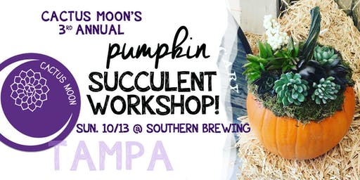 TAMPA Pumpkin Succulent Workshop with Cactus Moon