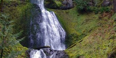 Silver Falls State Park -Lower North Falls Trail