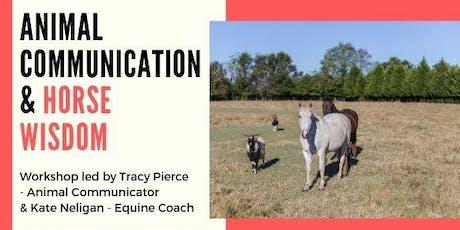 Animal Communication & Horse Wisdom Workshop  tickets