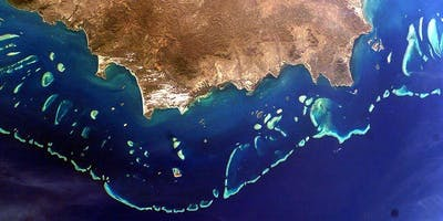 BrisScience: Mapping coral reefs from outer space