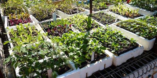 Plant Propagation Workshop.