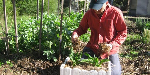 Climate Proof Your Garden