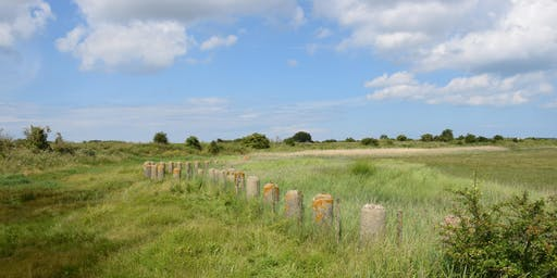 Port & protection: Pegwell Bay's military heritage (CITiZAN training event)