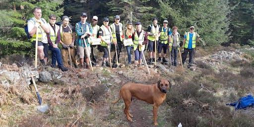 Masterblaster, Glen Tanar: Evening Trail Session 21st August 2019