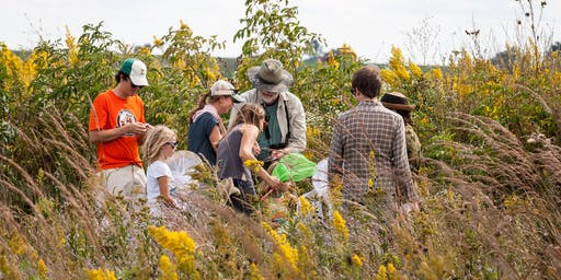 Monarch Tagging at Goose Pond Sanctuary 2019